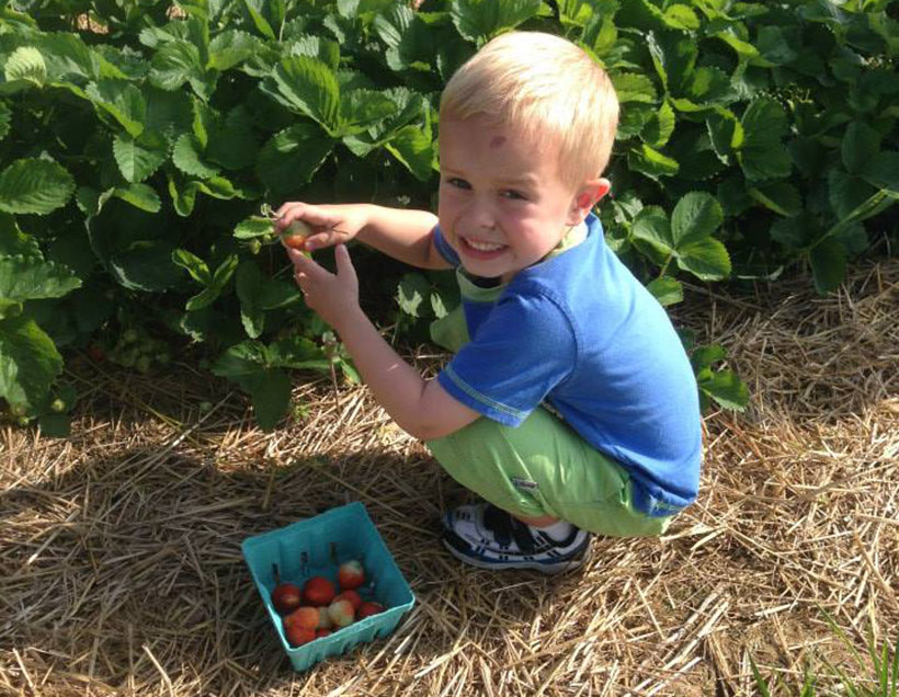 happy boy at a farm picking strawberries at a Preschool & Daycare Serving Carmel, Indiana