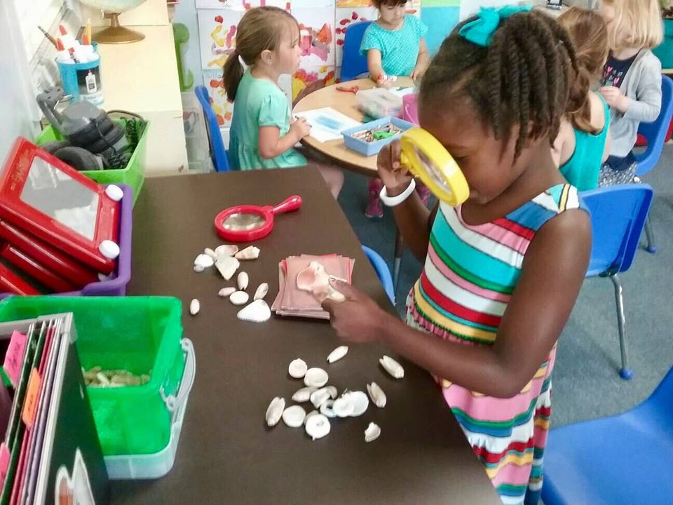 young girl with seashells at a Preschool & Daycare Serving Carmel, Indiana